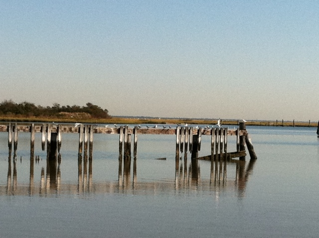 Zack's Bay, Jones Beach 10/10